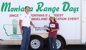 Reserve Range Plant Collection - Cindy Power